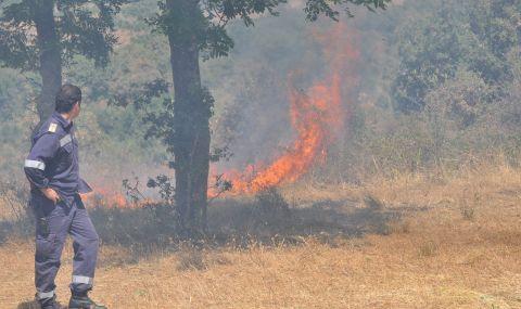 """Горя пожар в защитената територия """"Калиакра"""""""
