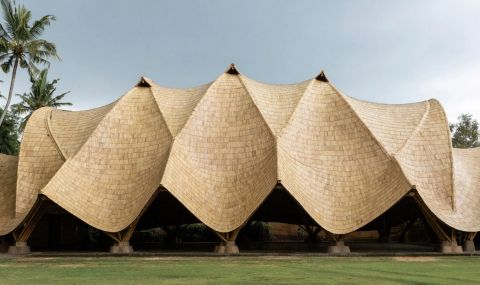 Уникална сграда в джунглата (СНИМКИ)