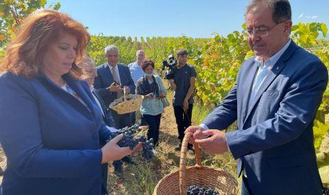 Бозуков: Тази година очакваме с 20% по-висок добив от грозде